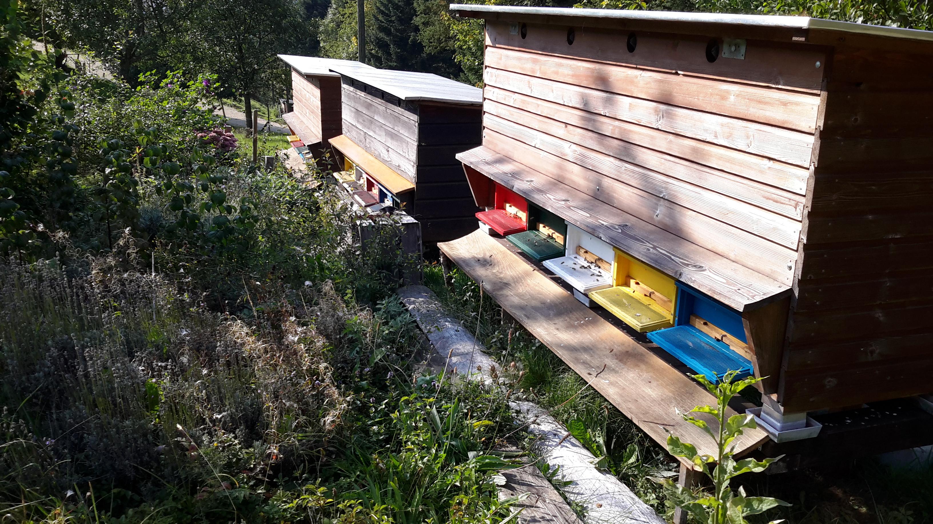 Les ruchers du Patalours – Les Pommerats