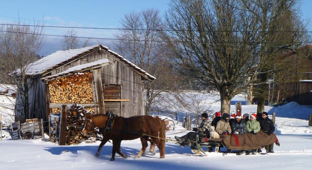 A la ferme de la Famille Rais – Les Cufattes